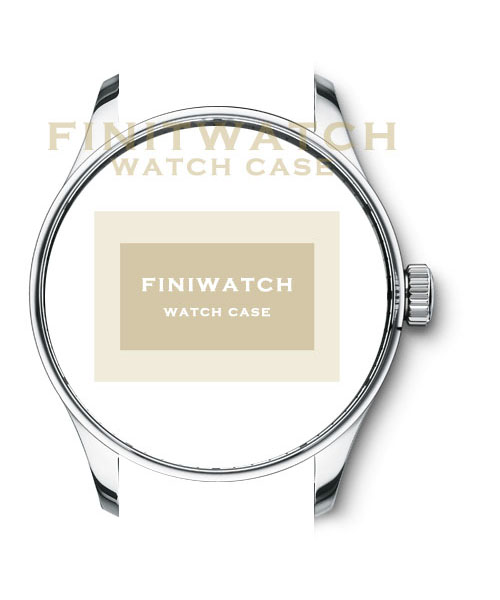 FINIWatches 316L stainless steel case FC003